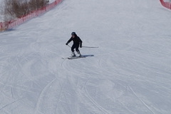Горные лыжи (5)
