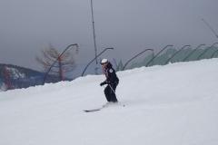 Горные лыжи (6)