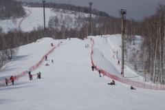 Горные лыжи (8)